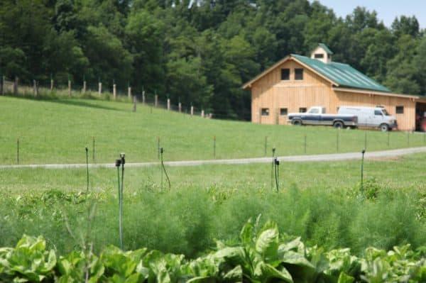 New Barn 2012