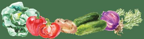 CSA Watercolor Veggies Banner